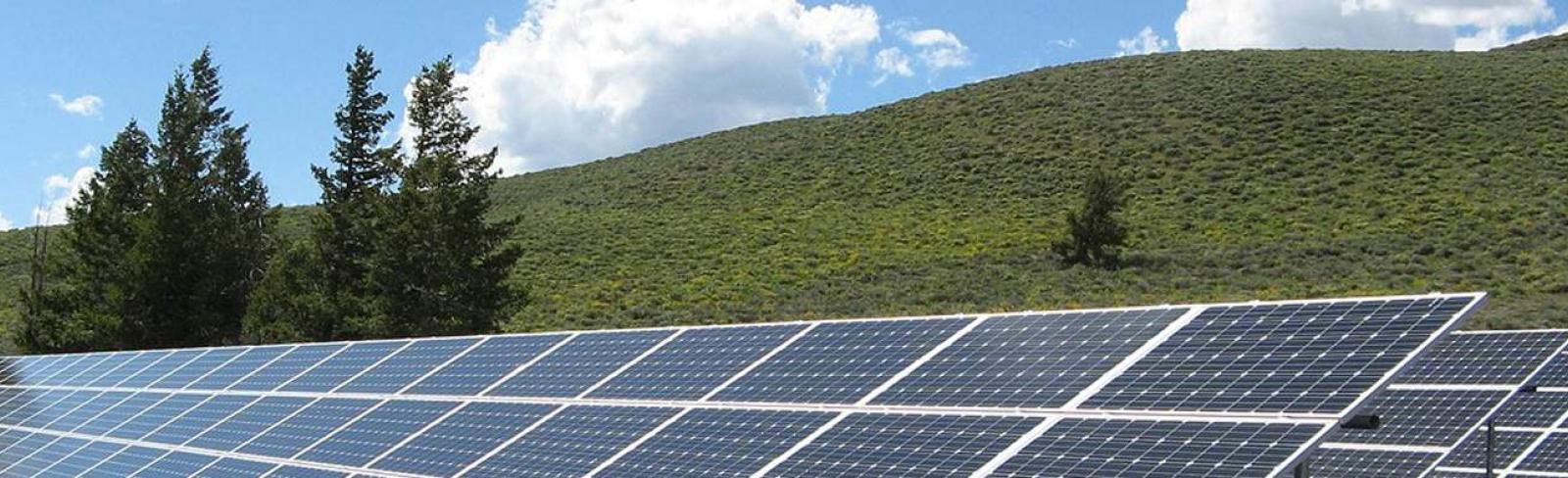 Integrating Variable Renewables Esmap