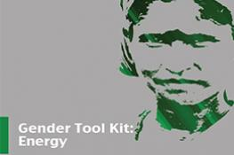 Gender and Energy Toolkit: Going beyond the Meter