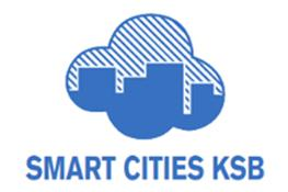 The Smart Cities