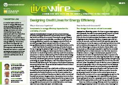 Designing Credit Lines for Energy Efficiency