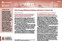 Why Energy Efficiency Matters and How to Scale It Up