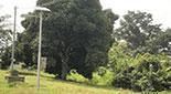 Rwanda Energy Access