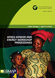 AFREA Senegal Gender and Energy Workshop
