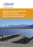 ESMAP Bringing Variable Renewable Energy Up To Scale (VRE) Report
