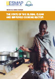 The State of the Global Clean and Improved Cooking Sector