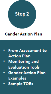 Step 2 | Gender Action Plan