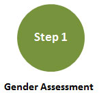 Step 1: Gender Terms of Reference